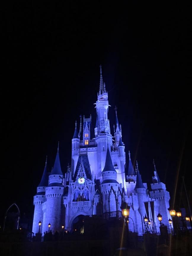 Plus Size Vacation Disney